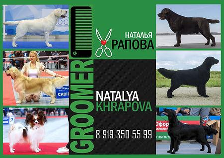 Грумер Озёрск, подготовка собаки к выставке, выставочный груминг