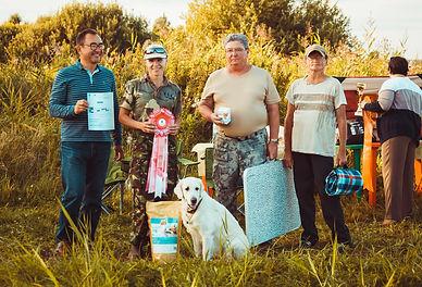 Состязания, Озёрный край, спорт, собаки, ретриверы, рабочие ретриверы