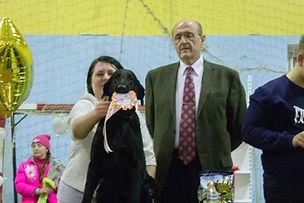 Bersifjor Villarosa, Retline kennel, Retline, Ретлайн
