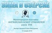 моноородная выставка английский кокер спаниель, Озёрск, Зима в Озёрске