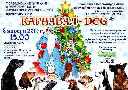 """""""DOG Карнавал"""", Озёрск, Собаковды Озёрска"""