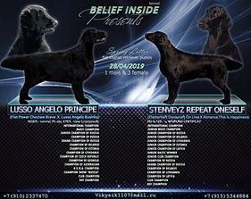 """""""BELIEF INSIDE"""""""