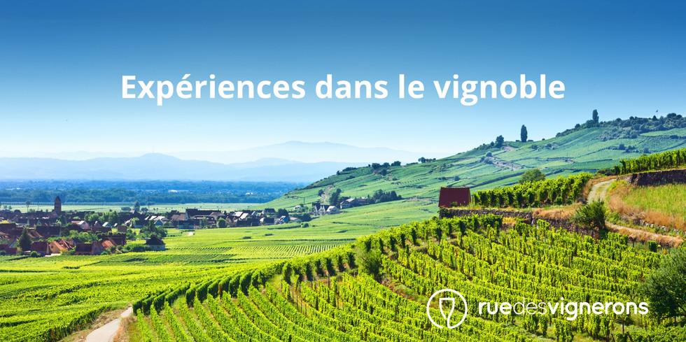 La Montagne de Reims et ces petits producteurs de Champagne.