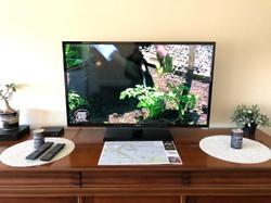 Télévisieur 120cm