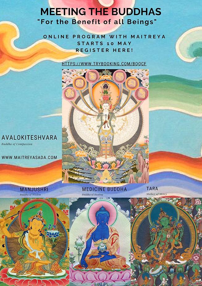 Meeting the Buddhas.jpg