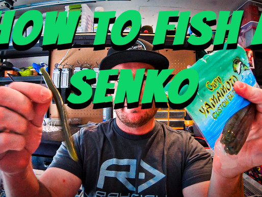 Everything you NEED to know to about How to Fish a Senko or Stick Bait!