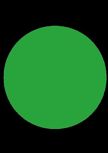 rond vert_Plan de travail 1.png