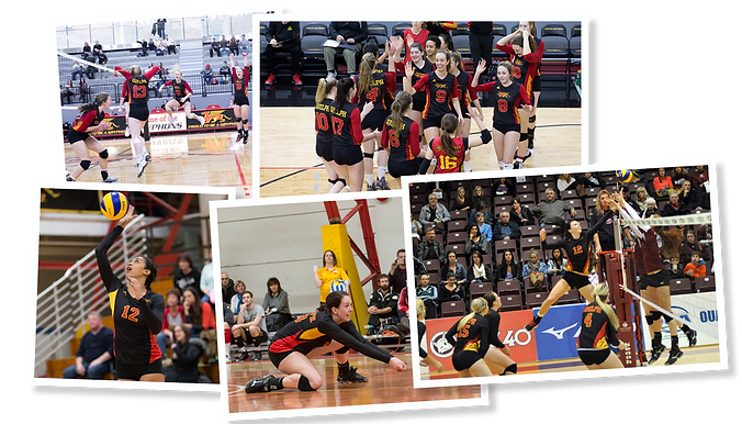 GryphonsGive-W Volleyball.png