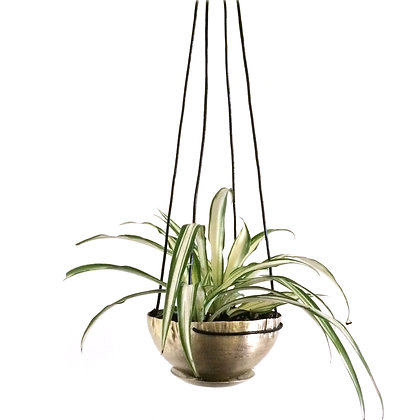 Hanging Planter-small