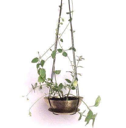 Hanging Planter-medium