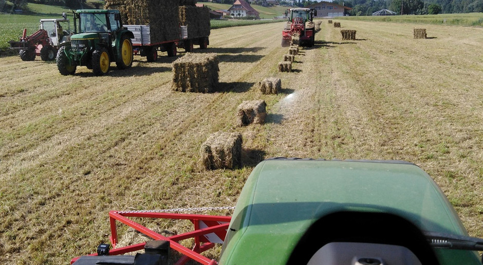 Agrofutterhandel_005_web.jpg