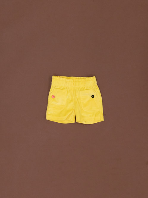 3067 SHORTS IN VELLUTO
