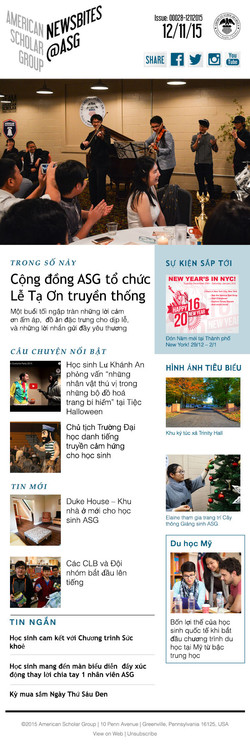 Newsletter (Vietnamese)