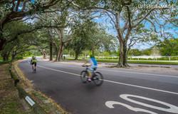 Centennial Park Location-4