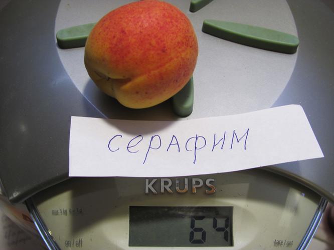 Серафим (3).JPG
