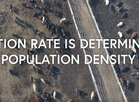 Infection Rate is Determined by Population Density