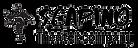 סקפינו לוגו (3).png