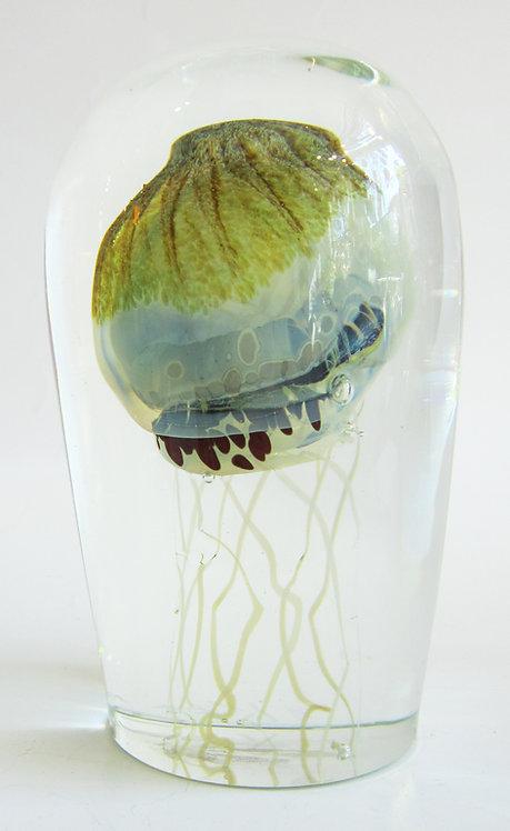 Karg Jellyfish