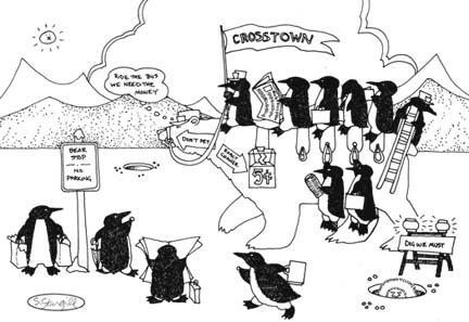 Susan Sturgill Crosstown Bear