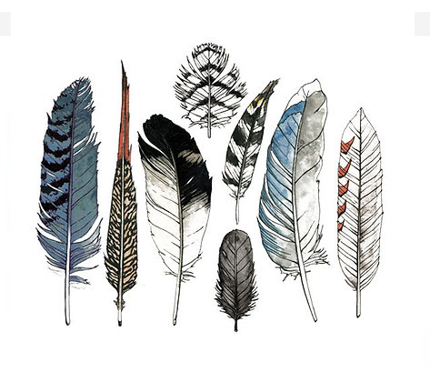Tattly Temporary Tattoos - Feathers