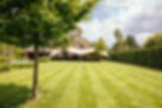 stretched_stmlatem02-0001.jpg