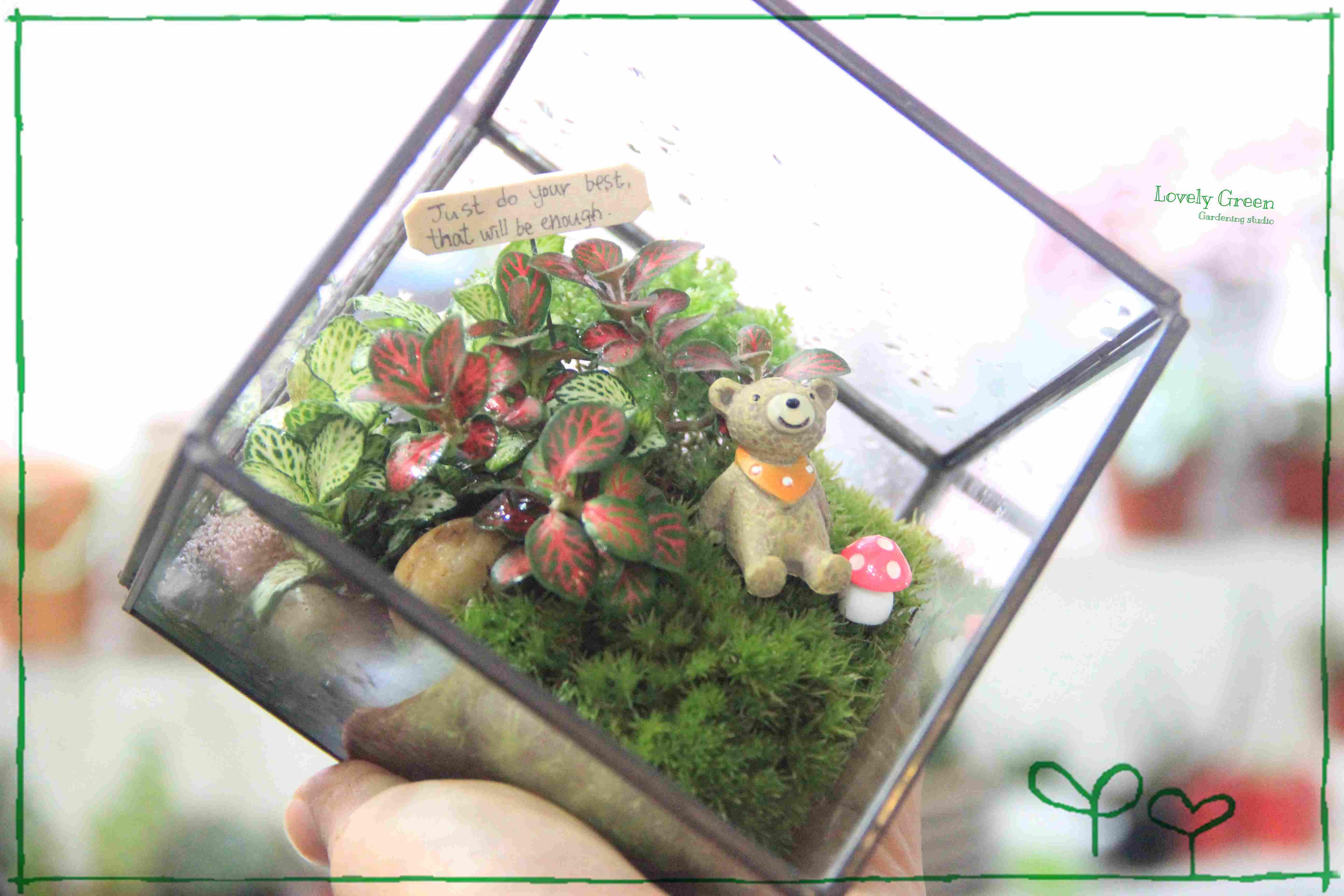 A. 夢想花園 $428