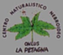 museo la petagna natura mostre longi b&b