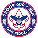Troop600Logo.jpg