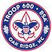 Troop600Logo.jpg