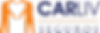 CARLIV logo (002).png