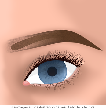 micropigmentacion de cejas correccion de tatuaje facialtec