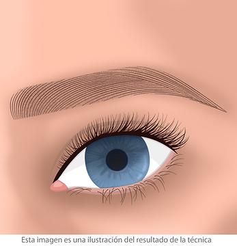 Micropigmentacion de cejas pelo a pelo facialtec