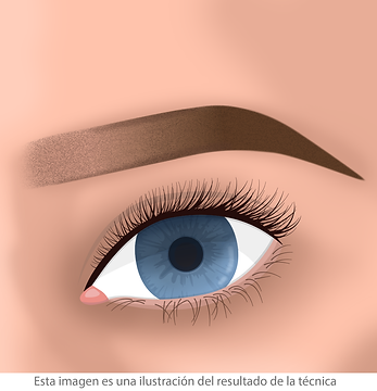 Micropigmentación de cejas microshading facialtec
