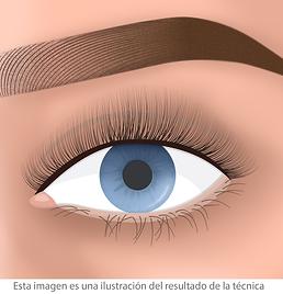 extensiones de pestañas arch narutal facialtec
