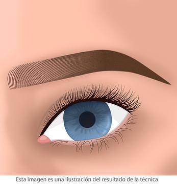 micropigmentacion de cejas hibrida facialtec