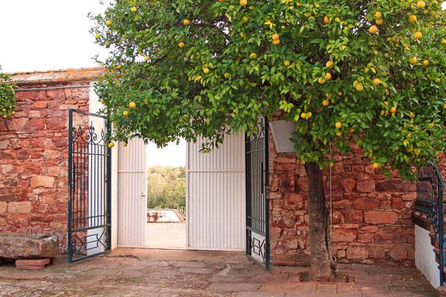 Andalusien-Rundreise-Reiseveranstalter