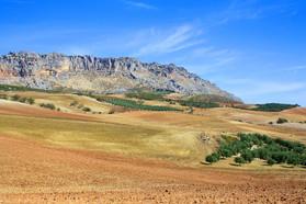 Andalusiennet.de-Naturpark-El-Torcal-Ant
