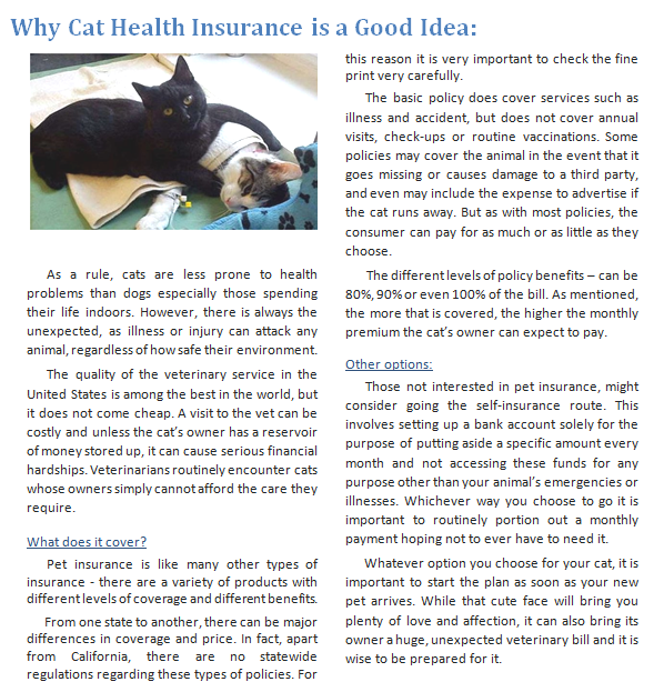 Why Cat Health Insurance is a Good Idea