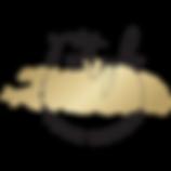 YSYD-logo-canva.png