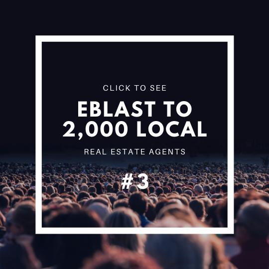 Click to see Eblast to 2,000 Local Realtors