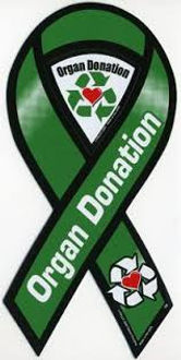 organ donor ribbon.jpg