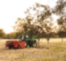 tractor and harvester 1.jpg