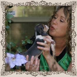 amy and baby beagle.jpg