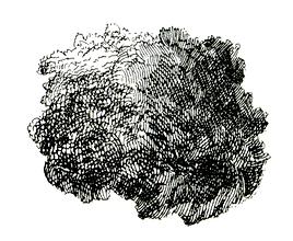 Rest Säule-1.png