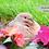 Thumbnail: Mourning Dove