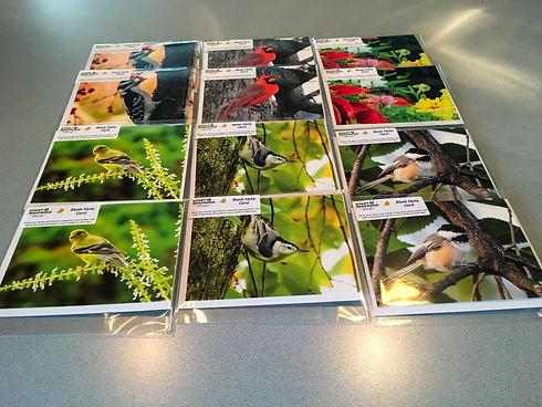 Identity Boutique Bird Order.jpg
