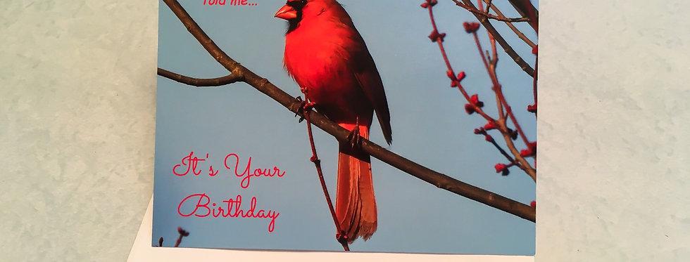 Cardinal Birthday Card