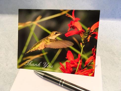 New Hummingbird Thank You JPG.jpg