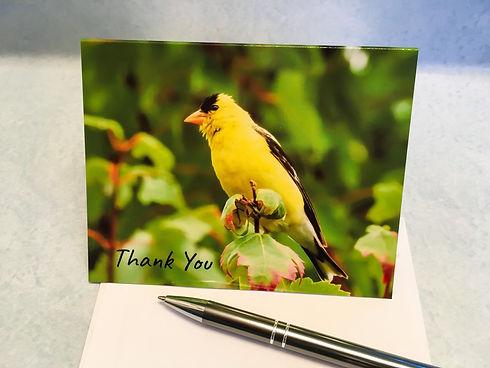 New Goldfinch Thank You JPG.jpg