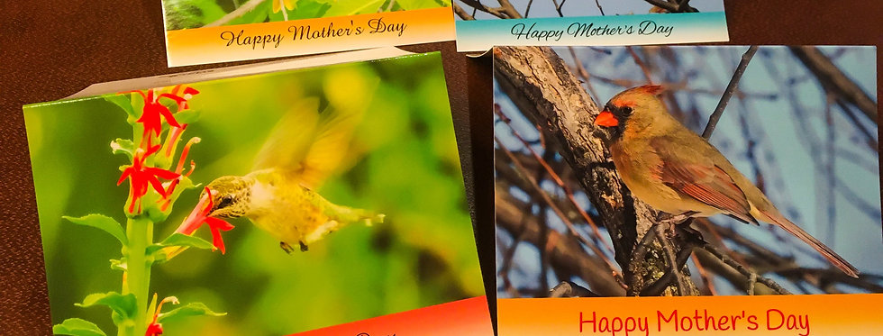 Mother's Day Cards (4 pack variety)